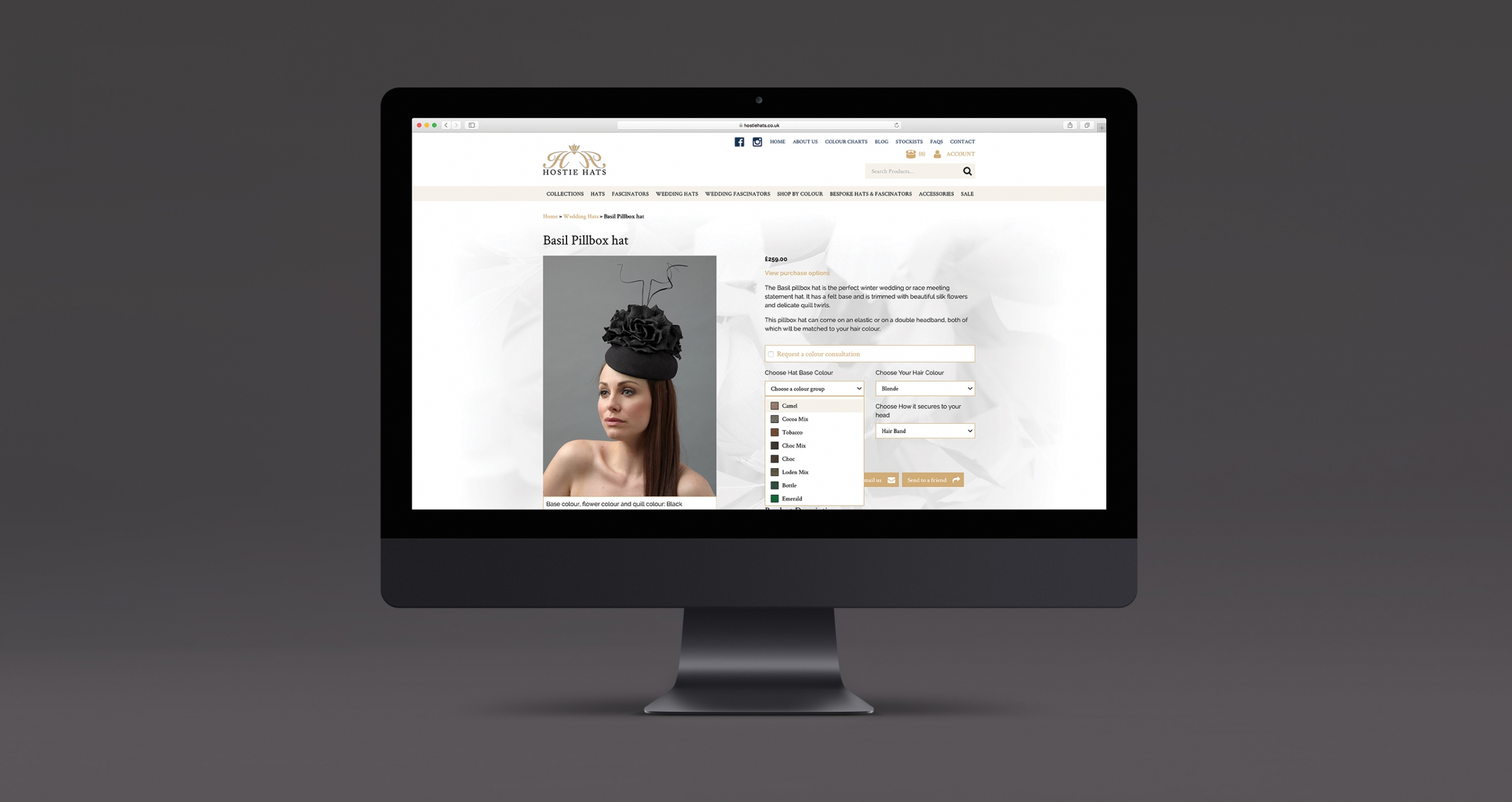 WordPress web design and development - Hostie Hats
